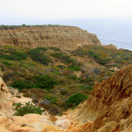 The Ins & Outs Of Torrey Pines Reserve Trails [With Pictures!]