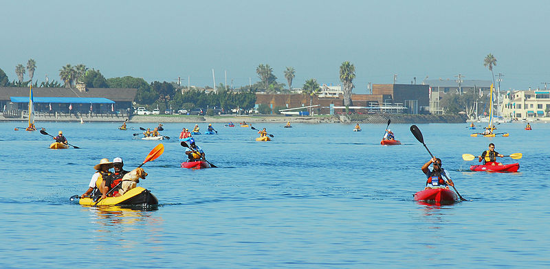 mission bay kayak view: kayaking in san diego